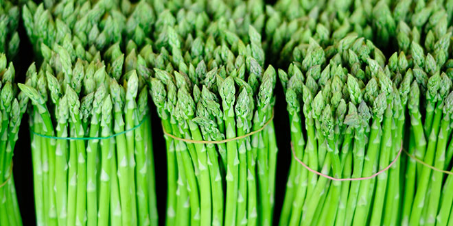 Globalization Hits Michigan's Asparagus Industry